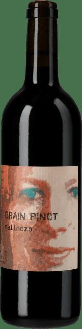 Image of Marie-Thérèse Chappaz Grain Pinot Malindzo 2014